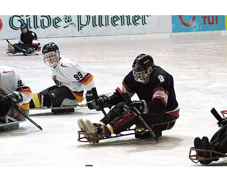 SPORTS > HOCKEY > ICE SLEDGE HOCKEY > ACCESSORIES